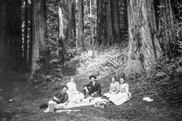 black and white photo of a family having a picnic by a large redwood tree