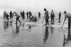 black and white photo of people clamming at clam beach
